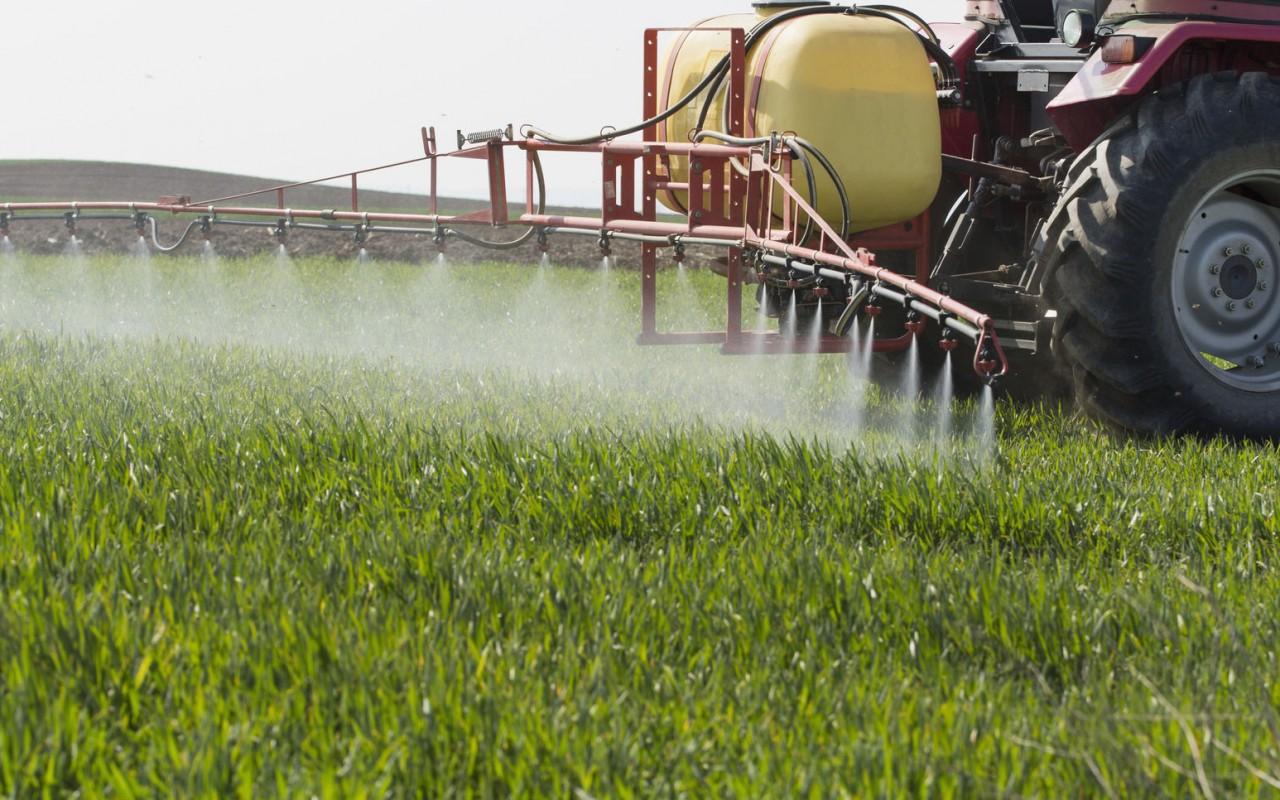 Cómo preparar un caldo fitosanitario
