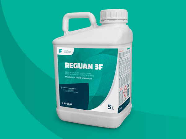 REGUAN 3F